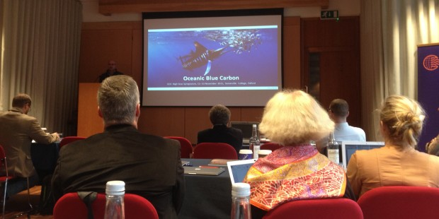 Oceanic Blue Carbon Presented at High Seas Symposium